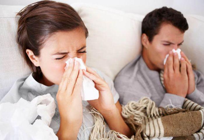 Những người bị sốt, cảm mạo không nên ăn tổ yến