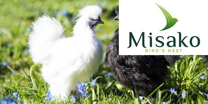 Gà ác là loại gà sở hữu kích thước nhỏ nhưng thịt gà vô cùng quý hiếm có nhiều giá trị dinh dưỡng nổi bật